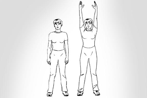 Упражнение для разогрева мышц живота