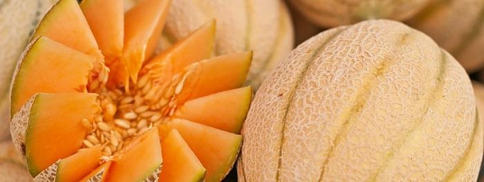 Диета С Дыня. Дыня для похудения: почему сладкий плод помогает снизить вес. Похудение на дыне: три диеты для сладкоежек